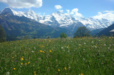 Best hikes in Grindelwald