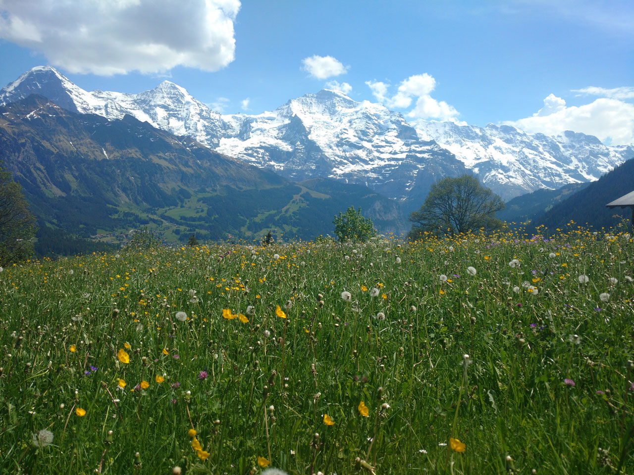 Best hikes in Grindelwald