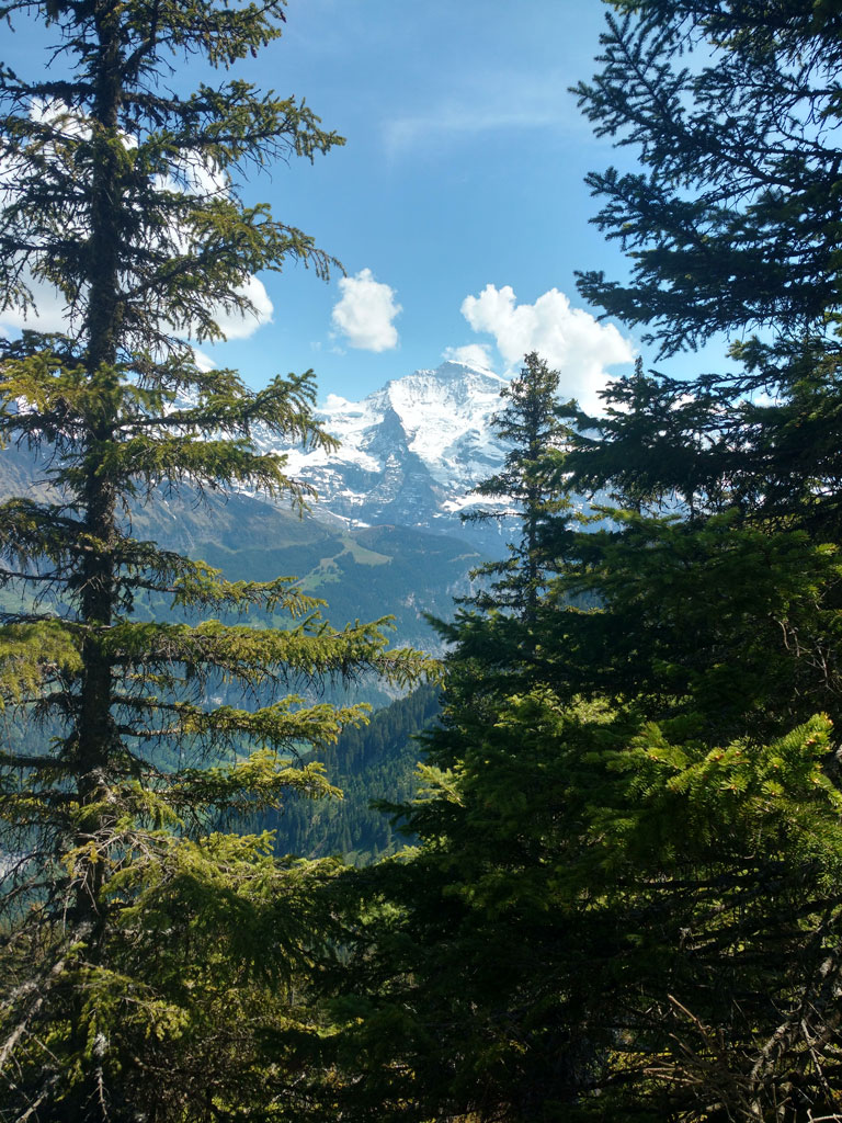 Mürren hiking trail