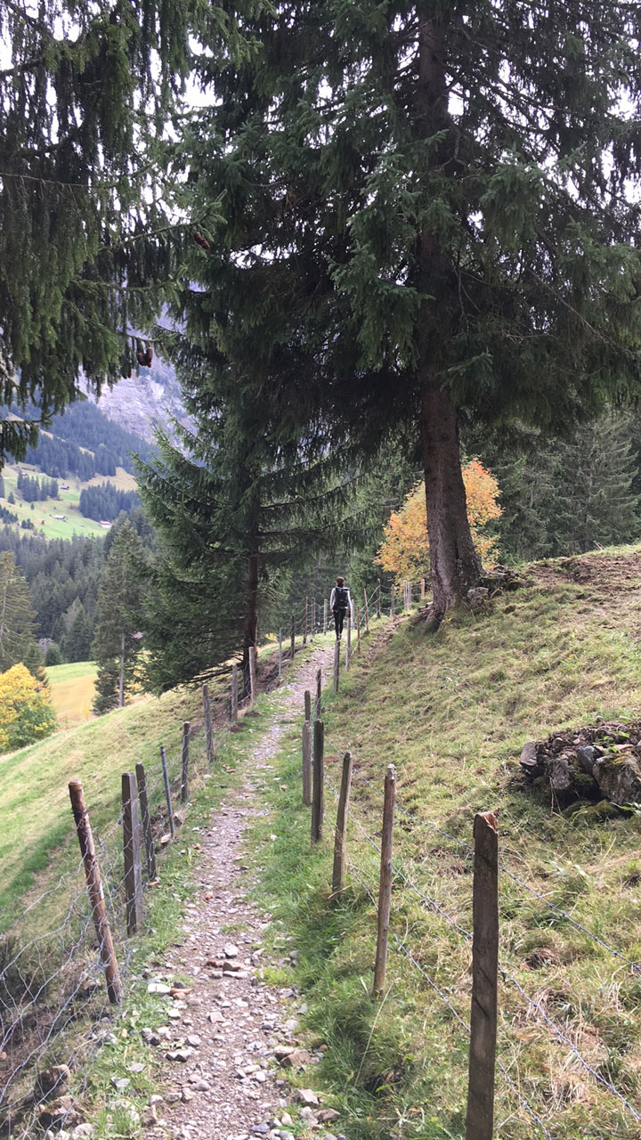 Hiking in Switzerland in September