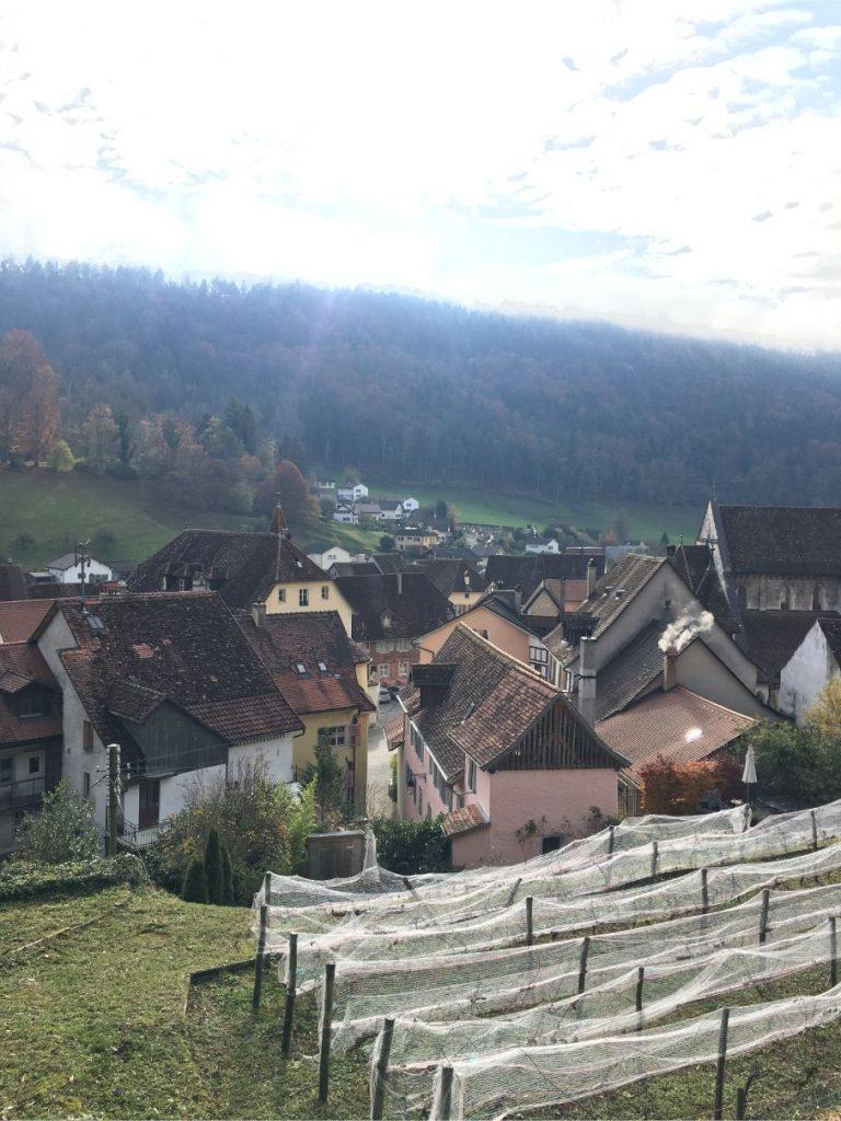 Saint Ursanne views