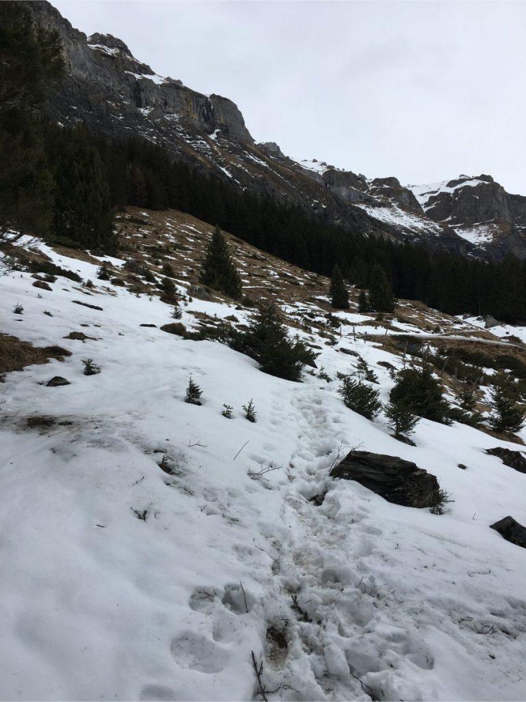 Steep snow in oeschinensee