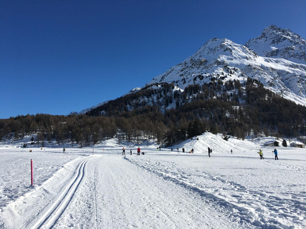 Maloja pass cross country skiing