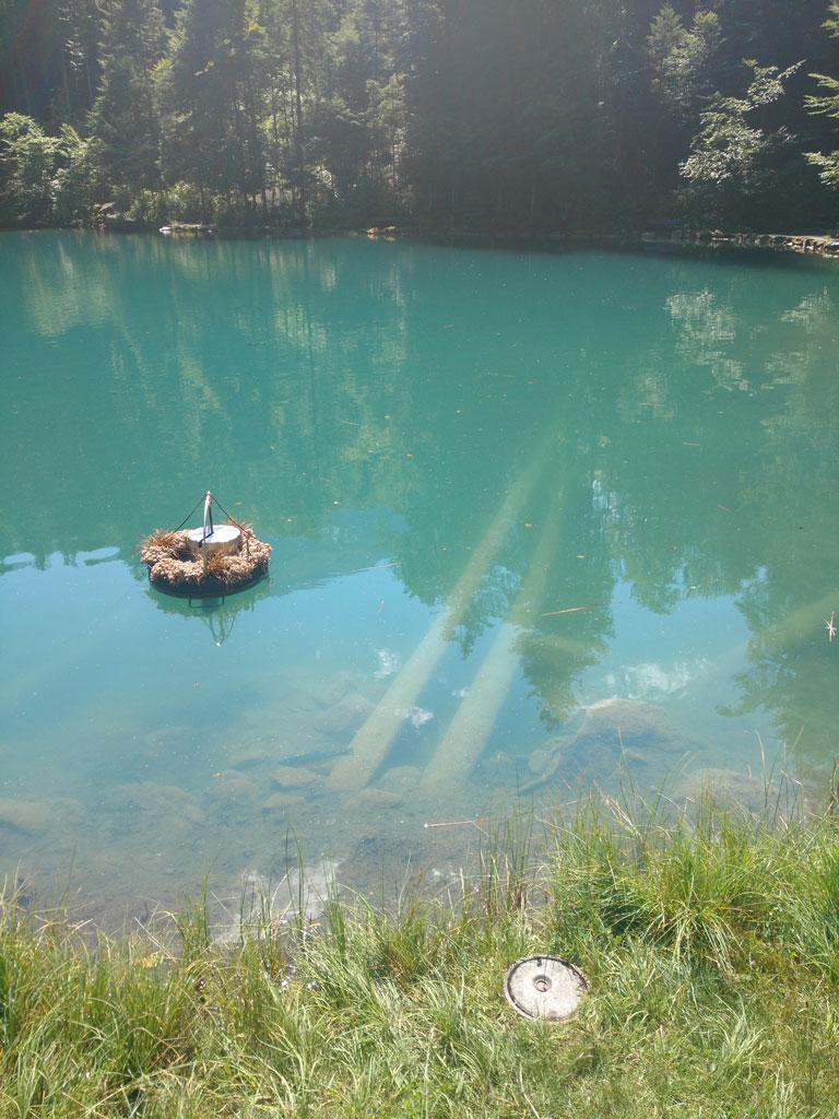 Blausee lake in summer