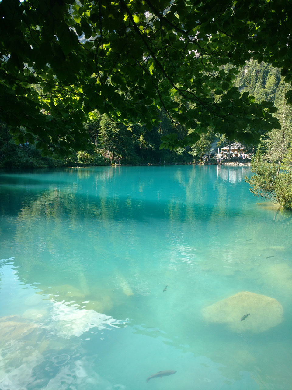 Blausee - crystal lake