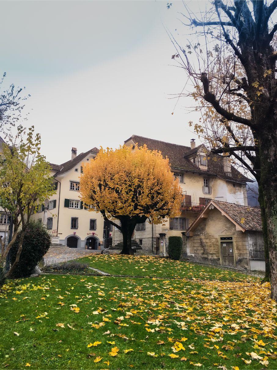 Schwyz Parks