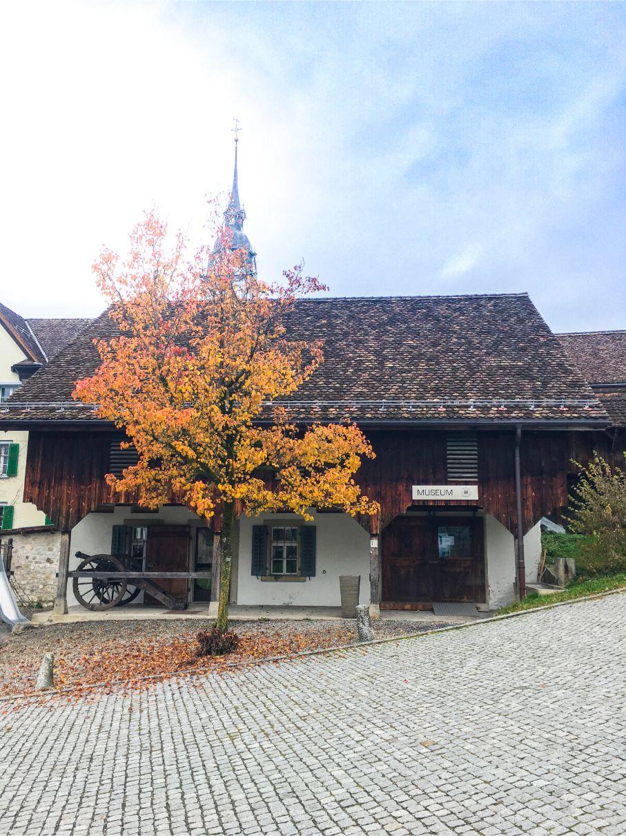 Schwyz museum