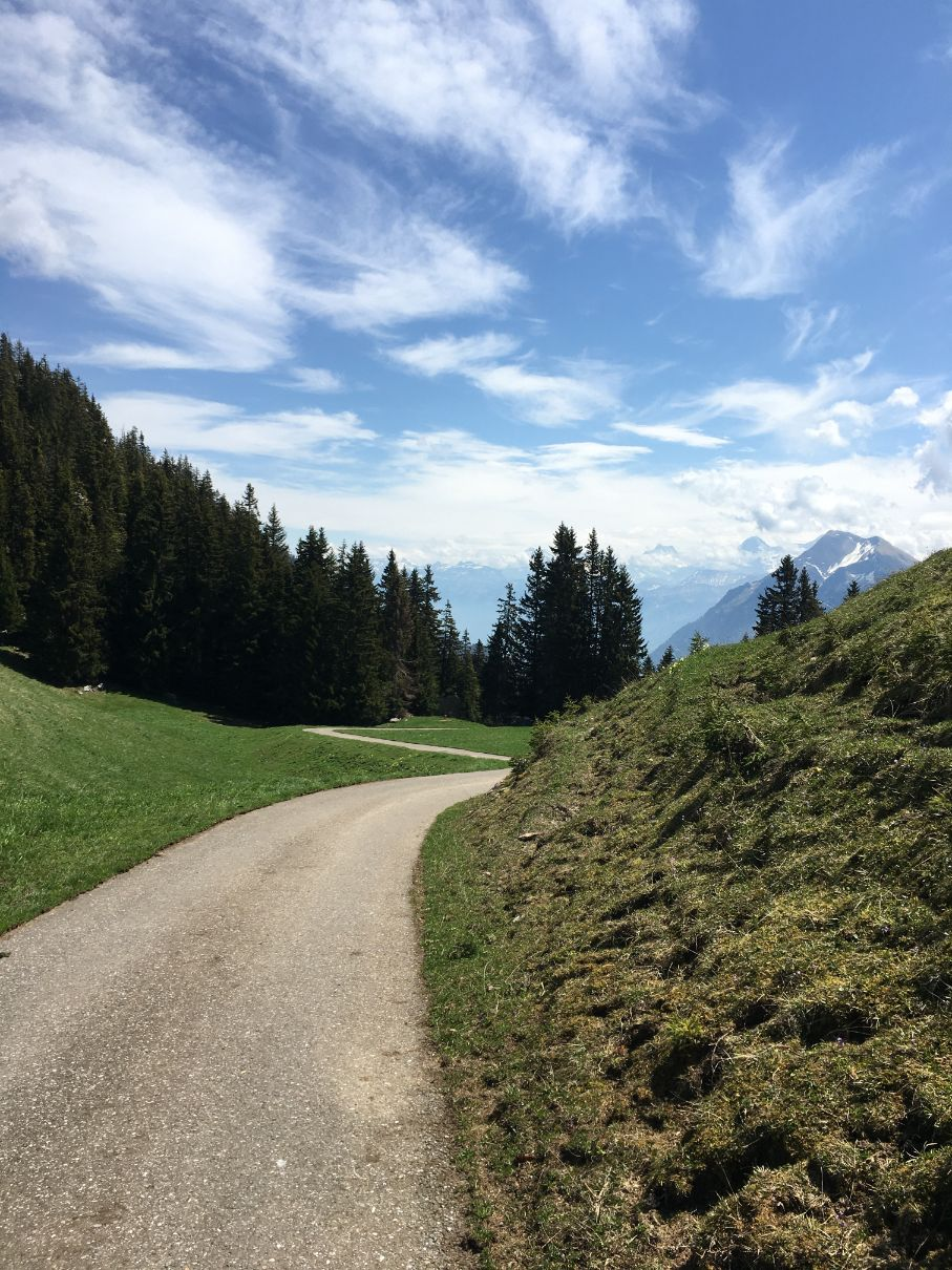 Path to Oberstockensee