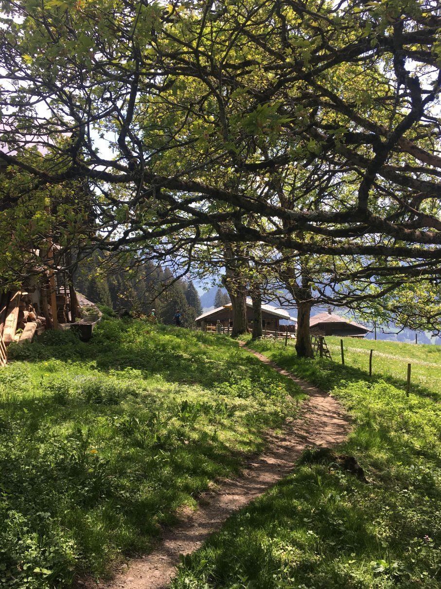 A small Swiss settlement