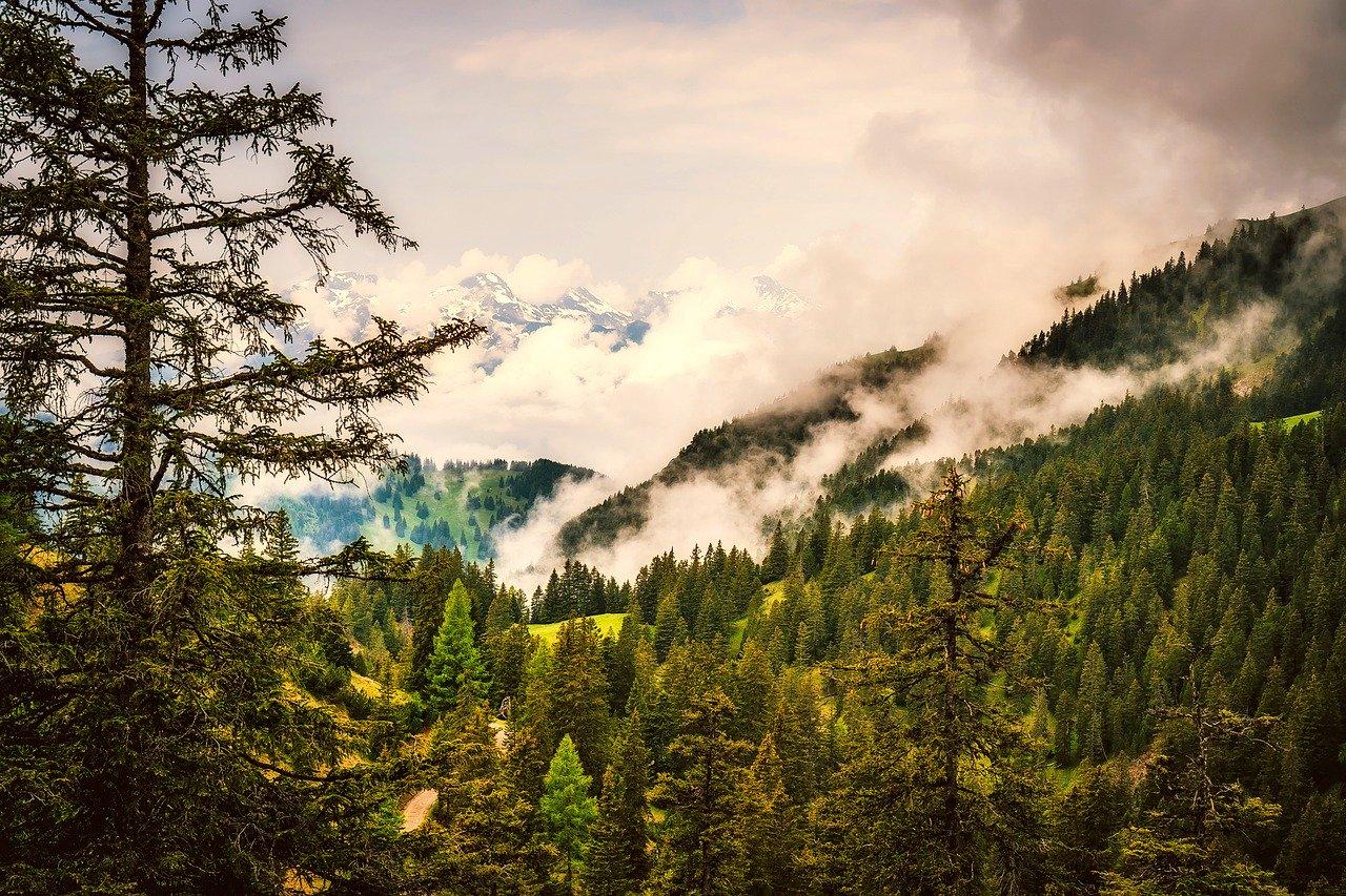 Liechtenstein nature & hiking trails