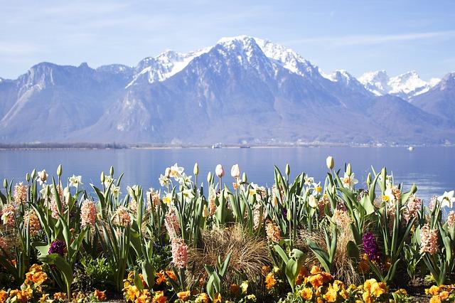 Beautiful Montreux Riviera