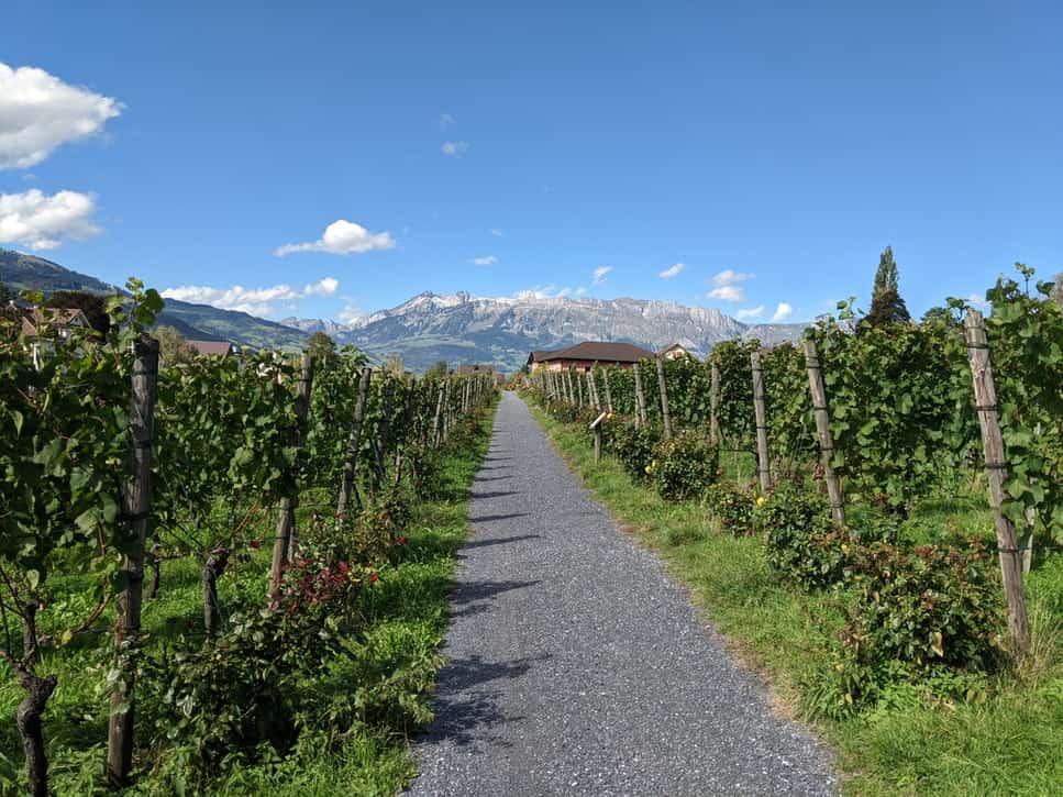 Summer in Liechtenstein