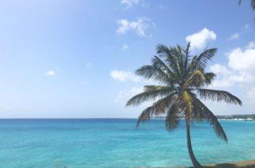 Barbados or Jamaica