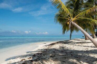Belize or Bahamas